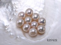 13-13.5mm White Round Loose Edison Pearl