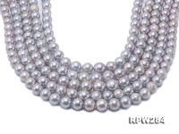 Necklace Made up of Freshwater Pearl is The Choice of The Millions